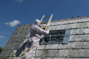 asbestos abatement edmonds wa