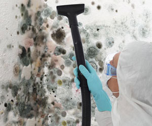 asbestos in homes tukwila wa